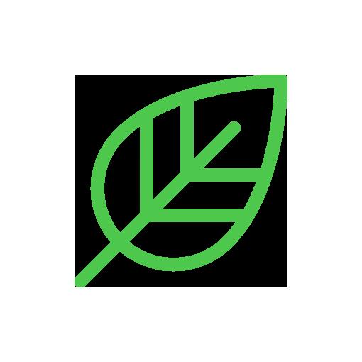 BOKROSGOMBA - A szervezet egyensúlyáért